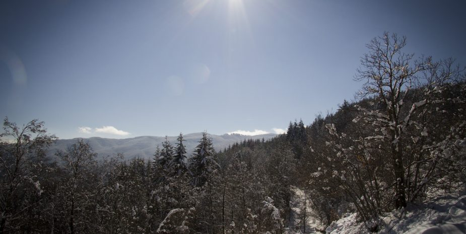 Neve Pratomagno
